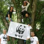Zusammen mit Franko Petri und Karim Ben Romdhane machen The Makemakes auf die prikäre Situation der leltzten Berggorillas aufmerksam und bitten ihre Fans um Unterstützung. (Foto: Molih)